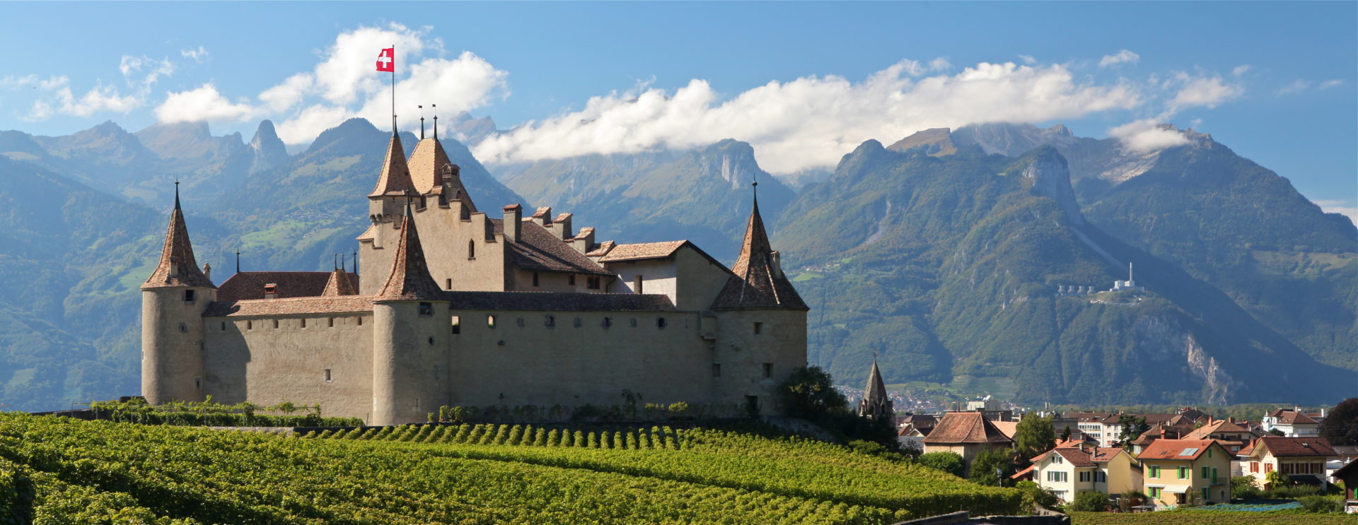 Vue sur le château d'Aigle depuis les vignes.