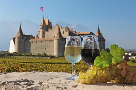 Château Aigle, dégustation de vin