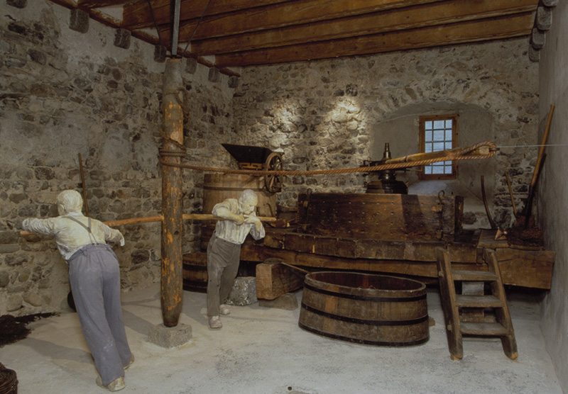 Museographie - Musée de la vigne